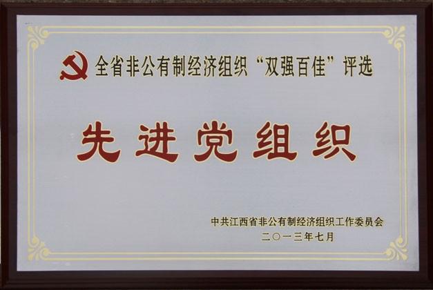 """2013年7月,公司党委荣获""""全省非公有制经济组织'双强百佳'评选先进党组织""""称号。"""